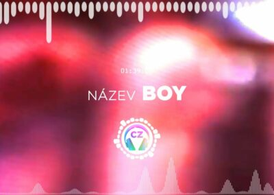 🎵 Boys in Lilies – BOY ✅ #NoCopyrightZone /// 💲FREE TO MONETIZE!