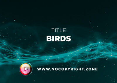 🎵 Scandinavianz – Birds ✅ #NoCopyrightZone /// 💲FREE TO MONETIZE!