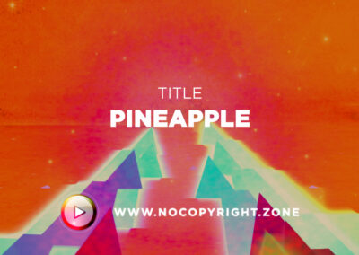 🎵 prod. by No Mic – Pineappl ✅ #NoCopyrightZone /// 💲FREE TO MONETIZE!