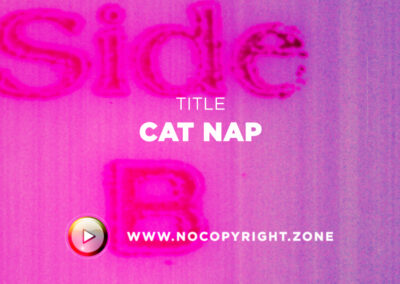 🎵 Purrple Cat – Cat Nap ✅ #NoCopyrightZone /// 💲FREE TO MONETIZE!