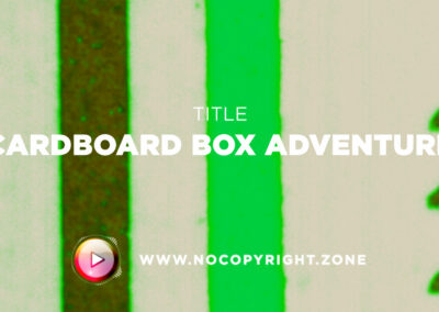 🎵 Purrple Cat – Cardboard Box Adventure ✅ #NoCopyrightZone /// 💲FREE TO MONETIZE!